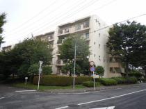 埼玉県富士見市西みずほ台3丁目
