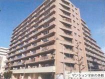 クリオ衣笠フィルソーレ8階の外観写真
