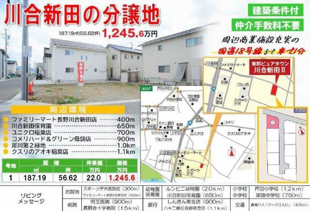 東邦ピュアタウン川合新田II 1号地の外観写真