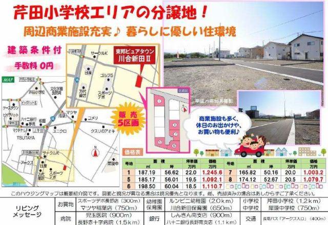 東邦ピュアタウン川合新田II 8号地の外観写真