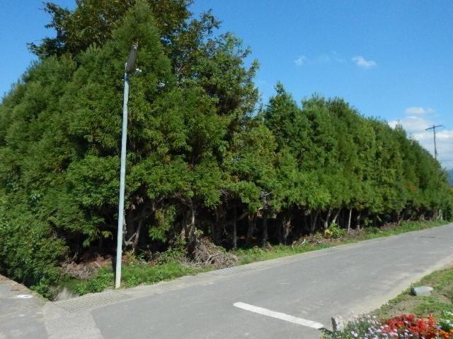 須坂市中島町 売土地の外観写真