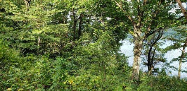 木崎湖畔 別荘用地の外観写真