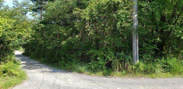 穂高 さわらびの里 別荘・住宅用地の外観写真