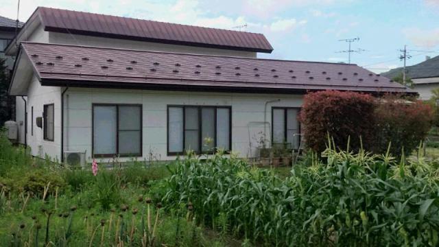 俵町丸山住宅の外観写真