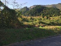 西条市丹原町 土地の外観写真