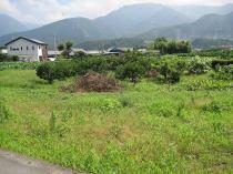 土居町北野 土地の外観写真