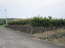 上柏町平木 土地の外観写真