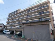 エリーナ箱崎の外観写真