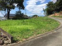阿蘇郡西原村布田土地の外観写真