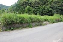 上伊形町 土地の外観写真