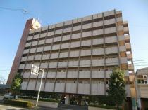 コーポラス5番館の外観写真