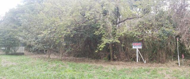 茨城県鹿嶋市宮中4553-1の外観写真