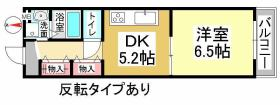 COCO新屋敷 間取りです COCO新屋敷 岡山市北区新屋敷町1丁目7-25 1DK